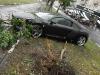 Audi R8 foto 6.jpg