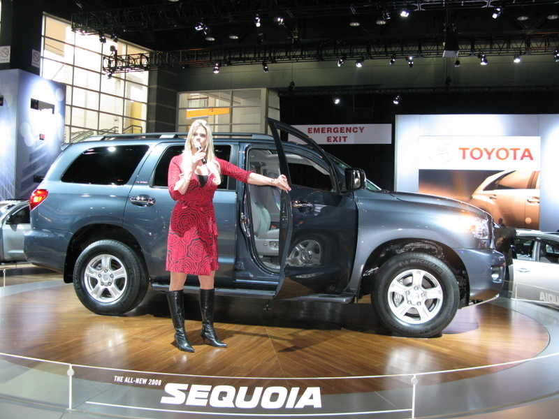 chicago-auto-show-2008-186.JPG