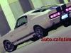 FordMustangshelbygt5003.jpg